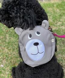 【網路限定】coen熊寵物用後背包